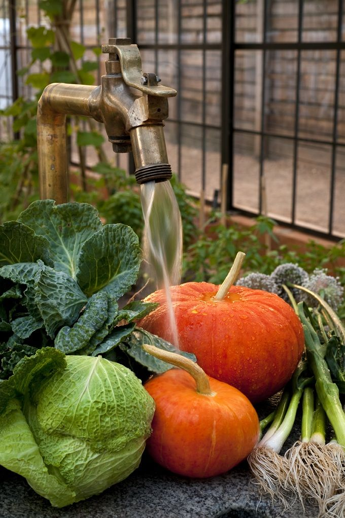 All fruit and vegetables are from Babylonstoren's own garden. #GourmetAfrica #foodie