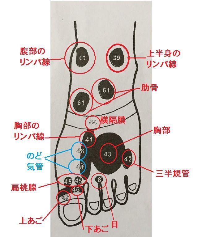 更年期に効く足ツボ|足裏にある!「内臓の場所」を知っておこう!