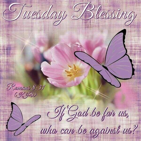 1091 best Tuesday images on Pinterest | Blessings, Good morning ...