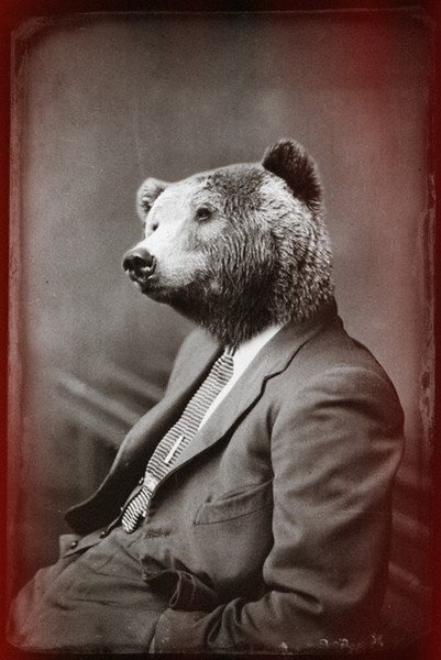 "he can't ""bear"" this suit any longer HAHAHAHAHAHA yeah I have no life"