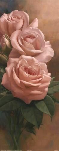 Dipinti di rose