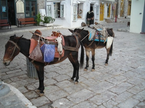 Saddle up in car-free Hydra, one of our 25 Fun Places to Visit in Greece