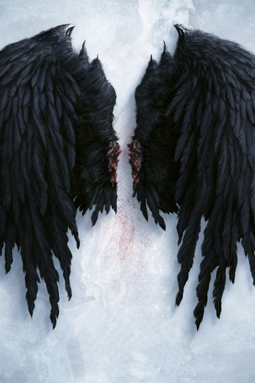 Angels keep falling from the sky. I'll take their broken wings and learn to fly