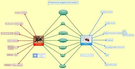 Mindmapping à l'école : comparer avec une carte double-bulle   Penser, réfléchir, planifier avec la carte heuristique, les cartes conceptuelles   Scoop.it