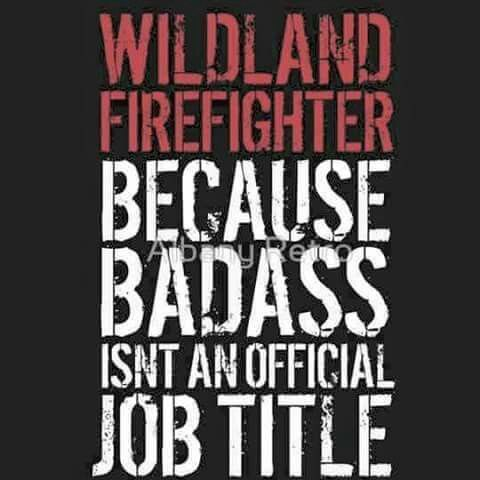 WILDLAND FIREFIGHTER  Because BadAss isn't an official Job Title