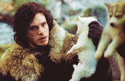 """A Jon Snow, Robb Stark & puppies gif  - notkatniss: """"IVE BEEN LAUGHING AT THIS THEY JUST STARE AT EACH OTHER HOLDING PUPPIES"""""""