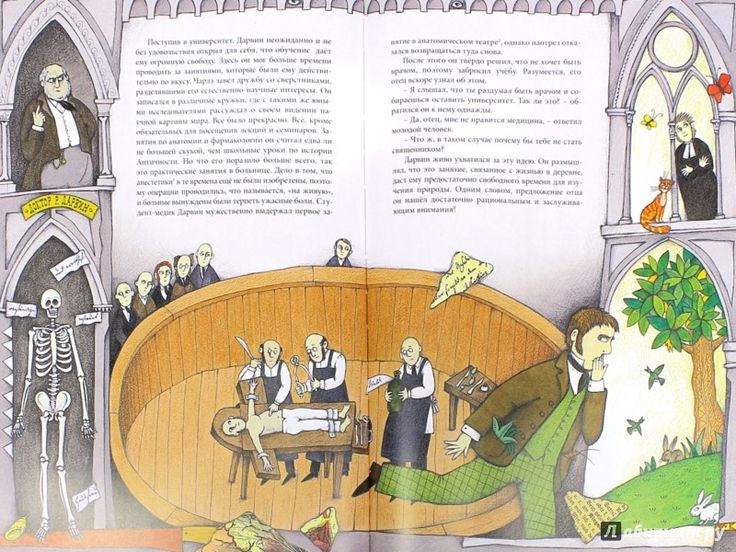 Иллюстрация 1 из 30 для Чарльз Дарвин - Ли-Юнь Инь | Лабиринт - книги. Источник: Лабиринт