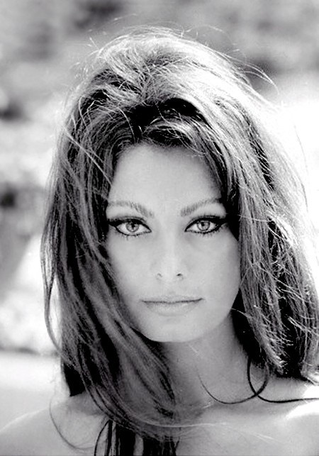 Everything about Sophia Loren exudes sexuality