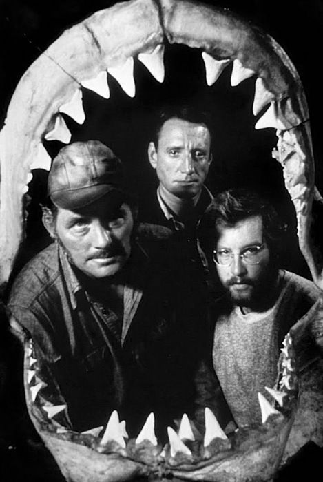 Three brilliant actors, one rubbery shark and a two note theme tune that still stops me relaxing in the ocean to this day!