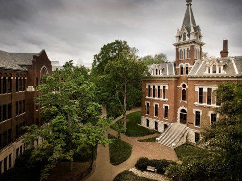 Vanderbilt  university | Vanderbilt University - Benson Hall at Vanderbilt Premium Poster