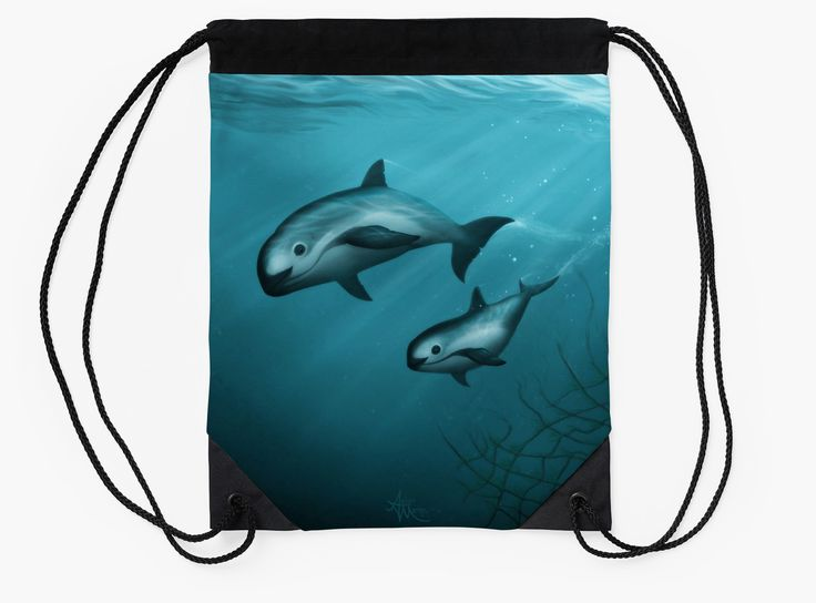 Vaquita Porpoise Art by Amber Marine | Endangered Species Art | 50% of artist's profit from this piece will be donated to the Vaquita Recovery Fund.