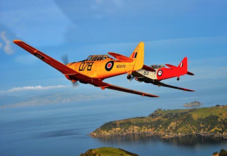 Hauraki Gulf - Auckland New Zealand