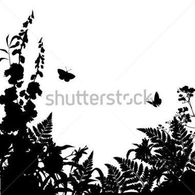 Vektorové divoké trávy, byliny a květiny silueta pozadí