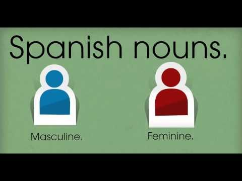 Gender rules and definite articles in Spanish.