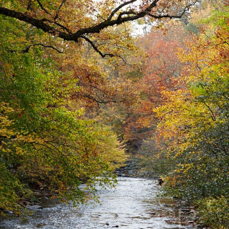 10 Must-Take Fall Trips: Camp in the Smoky Mountains
