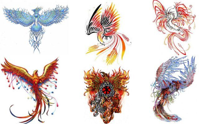 drawing of the phoenix bird | phoenix art - Anny Imagenes ...