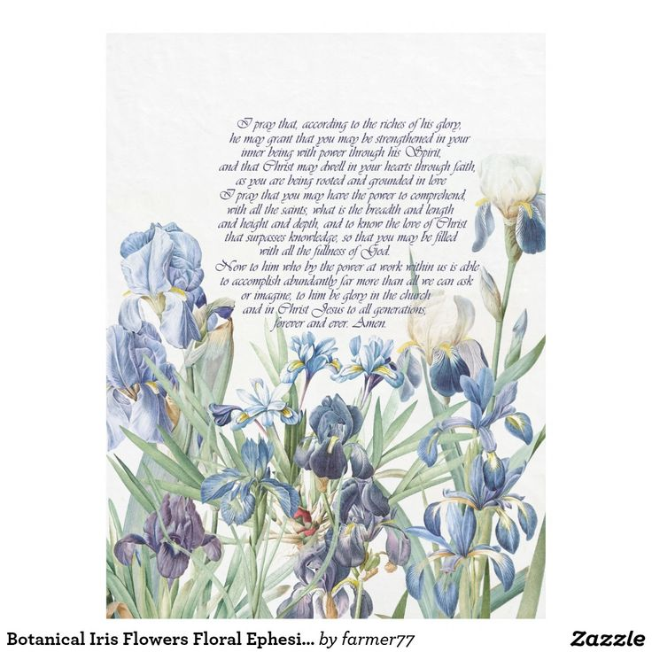 Botanical Iris Flowers Floral Ephesians Bible Fleece Blanket