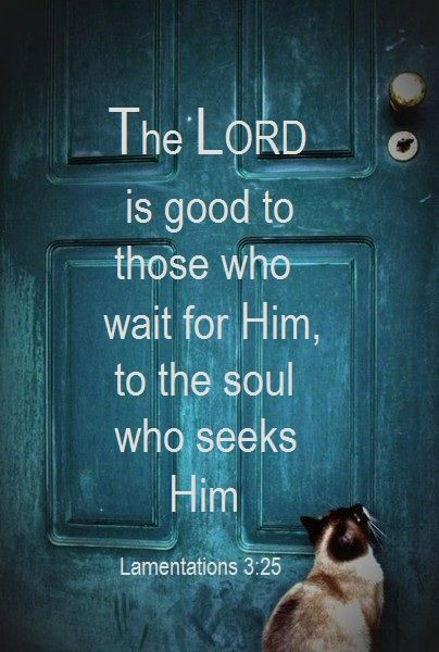 LAMENTATIONS 3:25, i love this verse, to seek God is so important and then to start depending on Him makes my life so different, I'm always trying to listen to what He is telling me