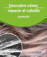 Descubre cómo reparar el cabello quemado El uso de la planchita o el secador…