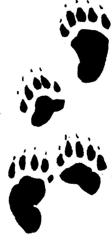 drawings of black bear tracks for under concrete sealer   | bear_tracks.gif