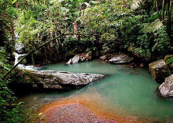 el yunque puerto rico | El Yunque, el bosque lluvioso de Puerto Rico