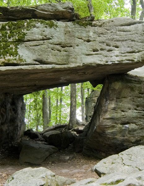 Beartown Rocks - Clear Creek State Park - Cook Forest