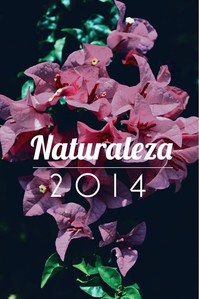 Naturaleza Flor Trinitaria Venezuela 2014 yaracuy
