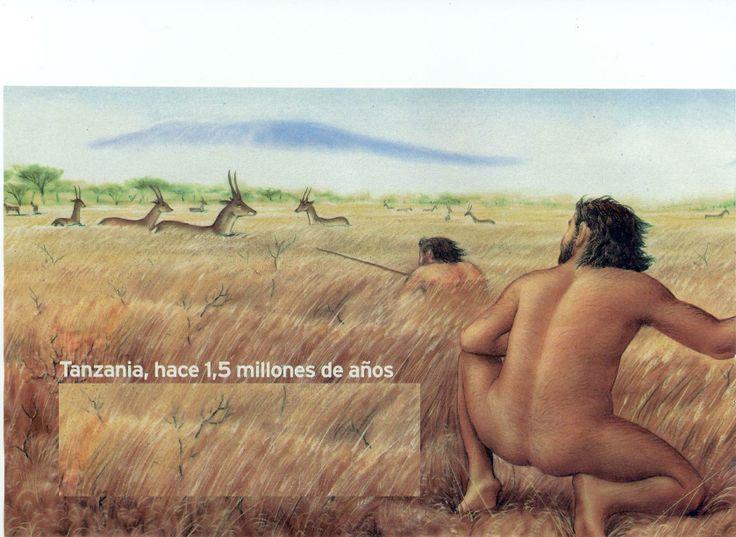 tanzania 1.5 millones años