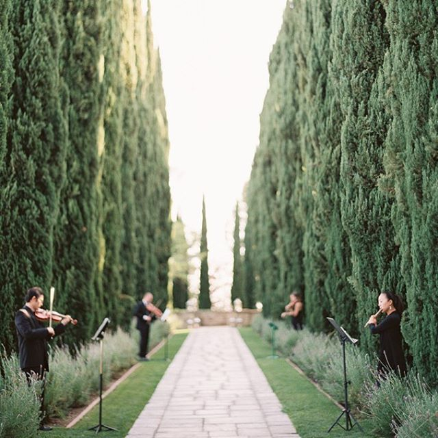 This magical #BeverlyHills #wedding had a string quartet lining the aisle into the reception! #weddinggoals | Photography: @carmensantorelliphoto | Event Design: @casasiena | Event Planning: @bridalandeventlounge | Venue: Greystone Mansion