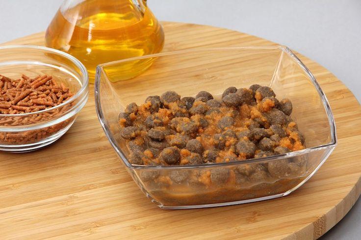 Пищевая добавка для собак - Olewo Морковь 1 кг - Интернет зоомагазин. Купить корм для собак и кошек, товары для животных в Николаеве