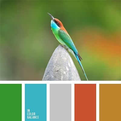 celeste, celeste vivo, color de las plumas, de color plata, elección del color, gris, gris y anaranjado, marrón amarillento, marrón y anaranjado, rojo anaranjado, selección de colores, verde, verde vivo, verde y celeste.