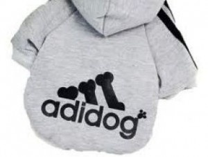 sudadera para perros adidas