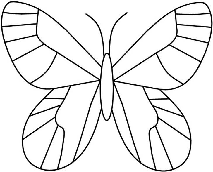 25+ unique Butterfly pattern ideas on Pinterest Felt butterfly - butterfly template