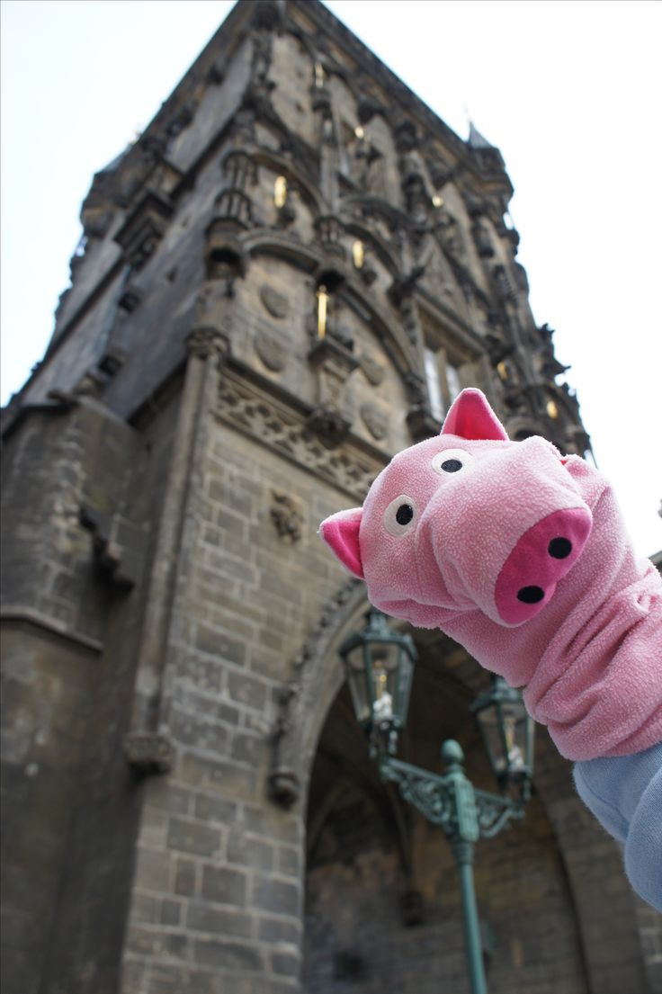 Nice #piggy in the #Prague