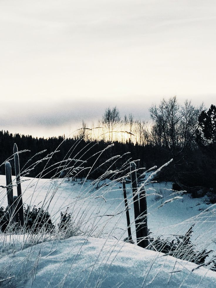 Crispy Sunset ❥ Gålå ❥ Norway