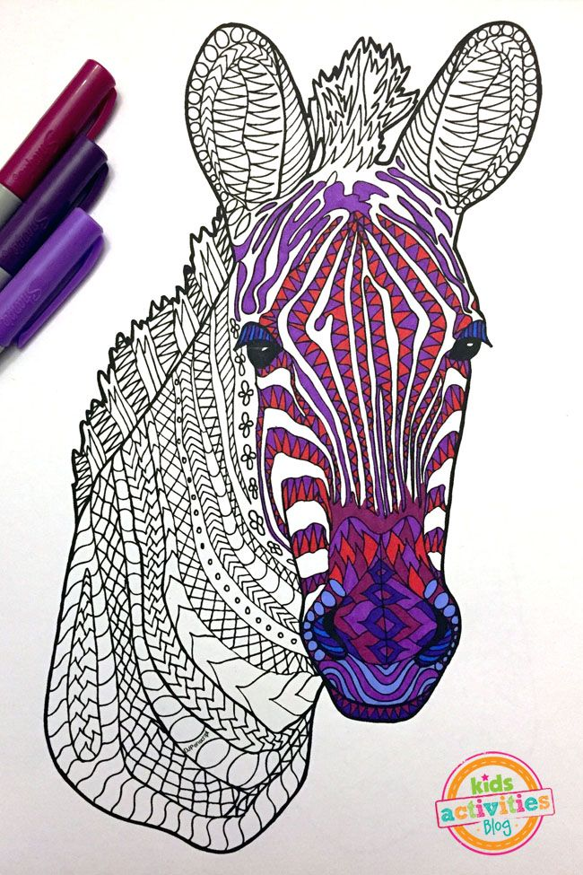Gorgeous Zebra Zentangle Pattern Coloring Page Animal Coloring Pages Zebra Coloring Pages Horse Coloring Pages