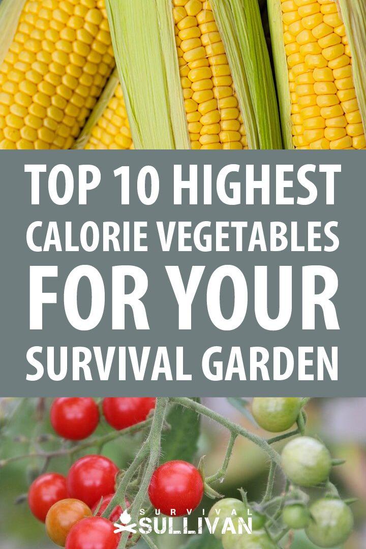 Top 10 Highest Calorie Vegetables For Your Survival Garden Best