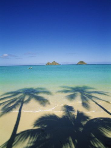 Lanikai Beach, Kailua, Hawaii, USA Photographic Print by Douglas Peebles at AllPosters.com