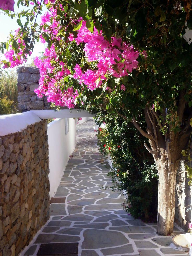 Mykonos island, Cyclades #SeeYouInGreece
