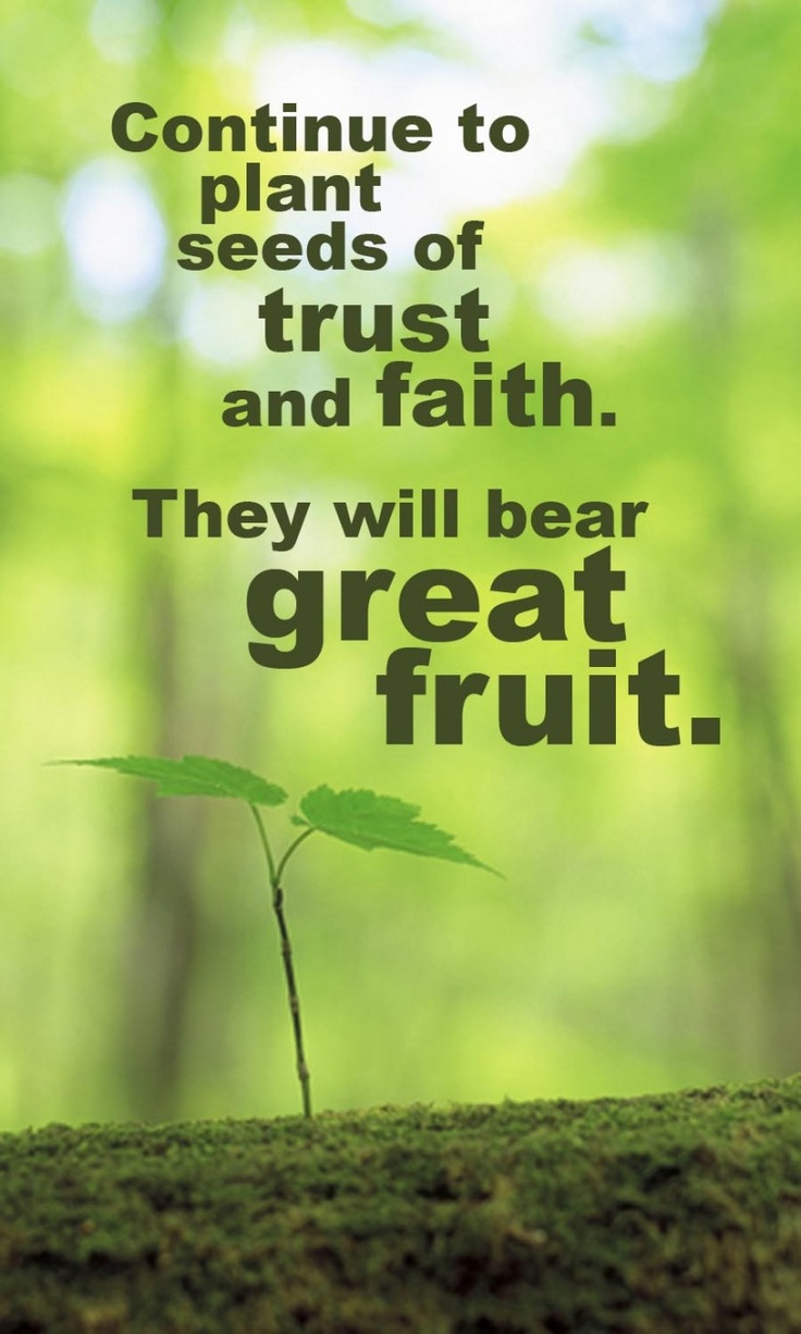 Quotes About Planting Seeds For Life 72 Best Faith  Growingsowing Seeds Of Faith Images On Pinterest
