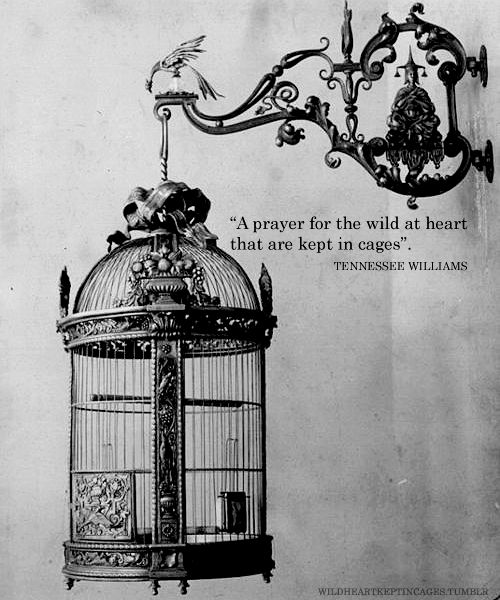 A prayer for the wild at heart, kept in cages - Tennessee Williams