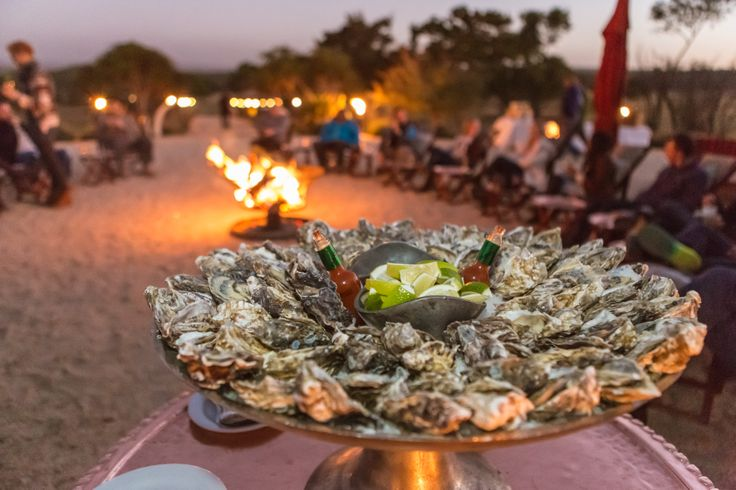 Fresh Swakopmund Oysters around the fire for starters!