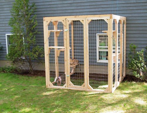 Outdoor cat run! Have to build one of these someday.