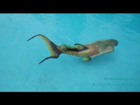 ▶ The Journey of Mermaid Melissa - Real-Life Mermaid Update 2013 - YouTube