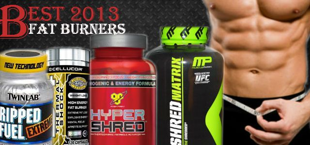 best fat burner 2013