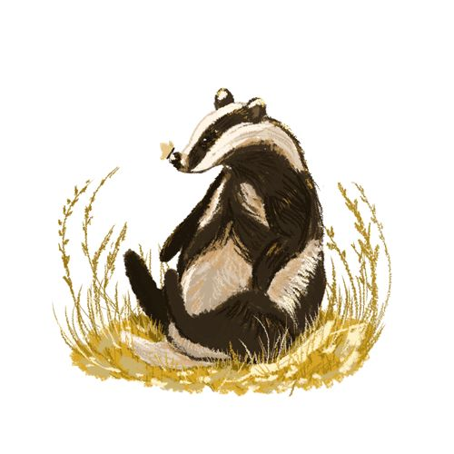 """Things Hufflepuff Do - Hufflepuffs watch sad movies just to cry. - Hufflepuffs cuss so much. - Hufflepuffs use stupid phrases like """"hugs not drugs."""" - Hufflepuffs mumble. - Hufflepuffs are addicted to flowers and plants, it's not just a stereotype, it's a way of life. - Hufflepuffs dance and sing if they suck at both. - Hufflepuffs doodle unrecognizable items. - Hufflepuffs like dogs more than people. - Hufflepuffs talk to inanimate objects."""