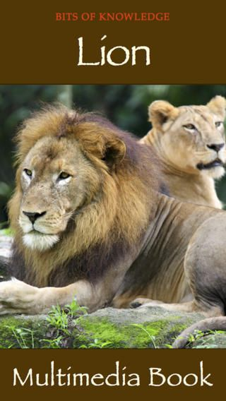 Lion Book - Another beautiful book by WINKtoLEARN on lions. This book contains retina-quality photographs and explanatory video on these magnificent cats with bits of knowledge helping children to learn more about them!