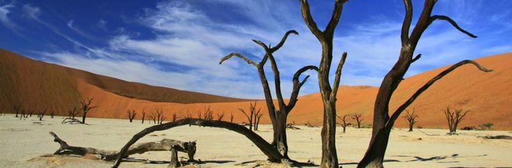 The red dunes in Sossusvlei