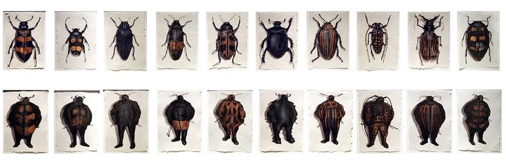 Walter Oltmann: Beetles and Suits (A-J) 2007