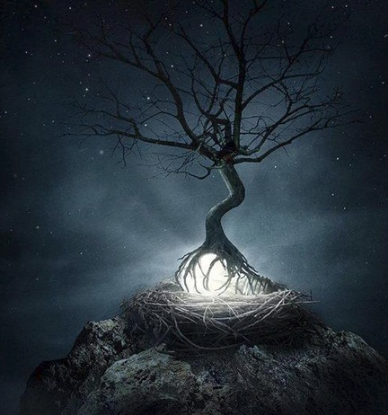 """""""Surreal photo-manipulation by Sarolta Bán, photographer from Budapest, Hungary""""Surrealism Art, Trees Art, Magic, Photomanipulation, Photos Manipulation, Concept Art, Trees Of Life, Sarolta Bans, The Roots"""